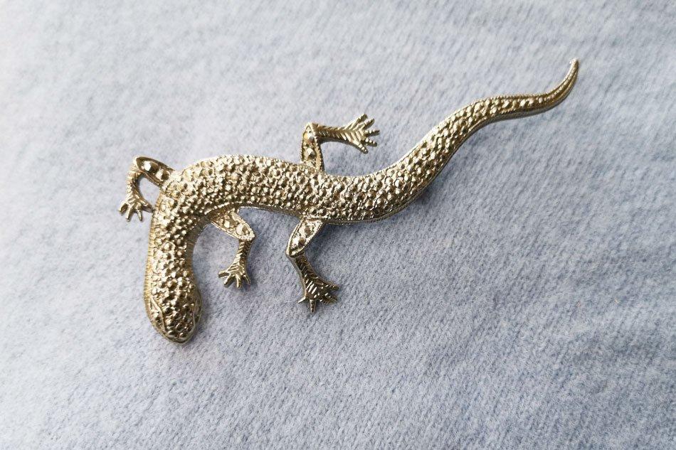 lizard-brooch